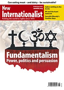 Fundamentalist: Power, politics and persuasion